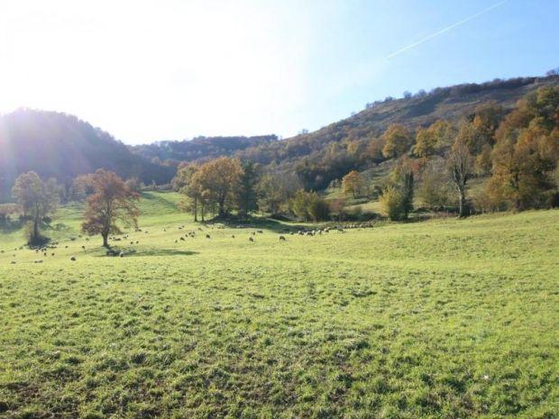 Ostabat-Asme, Aquitaine Limousin Poitou-Charentes, Ranska