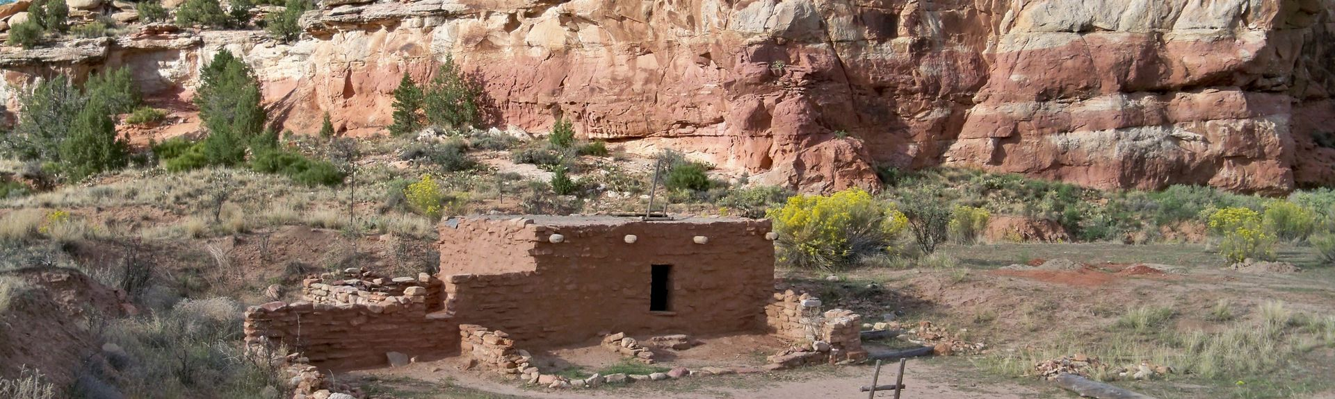 Spruce Tree House, Mesa Verde National Park, CO, USA