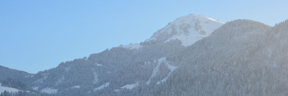 Teleférico de Esqui de Laerchfilzen, Fieberbrunn, Tyrol, Áustria
