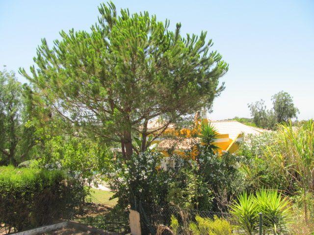 Malheiro, Portimão, Distrito de Faro, Portugal