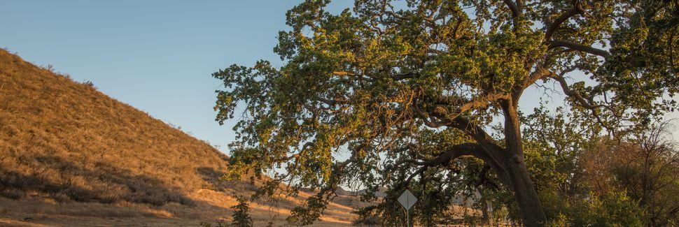 Agoura Hills, CA, USA