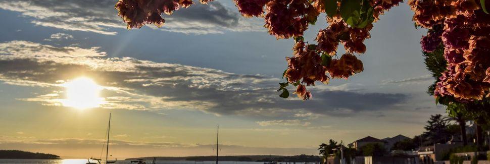 Spiaggia di Zrce, Pago, Regione zaratina, Croazia