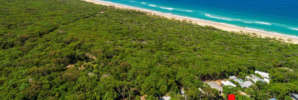 Cooloola National Park, Queensland, Australië