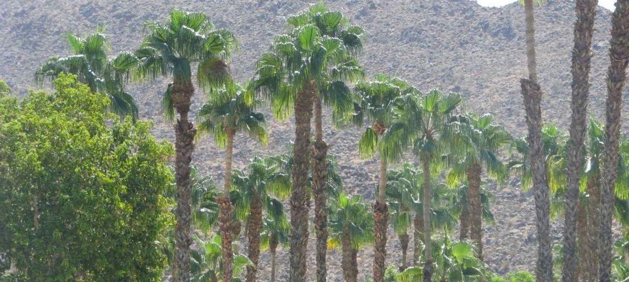 Ironwood Country Club, Palm Desert, CA, USA