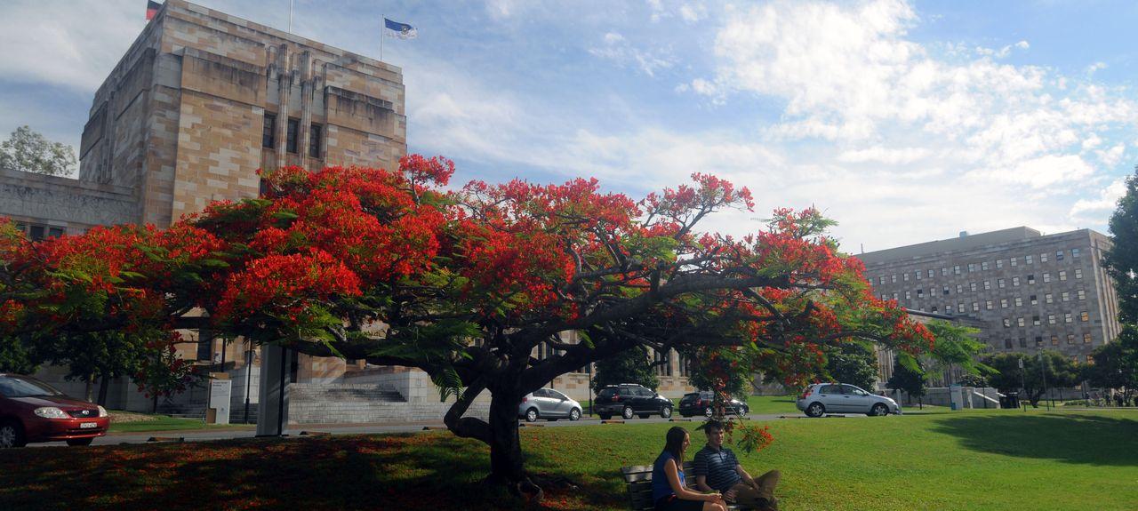 Saint Lucia, QLD, Australia