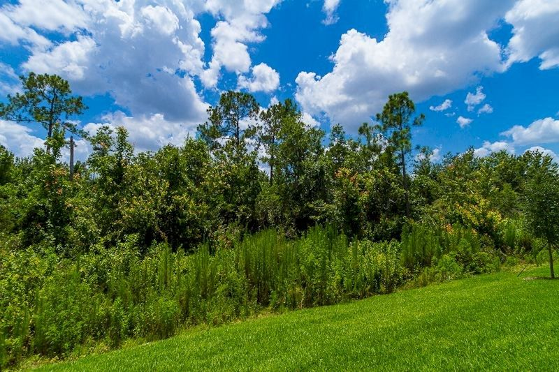 Pinewood, Davenport, Florida, Stati Uniti