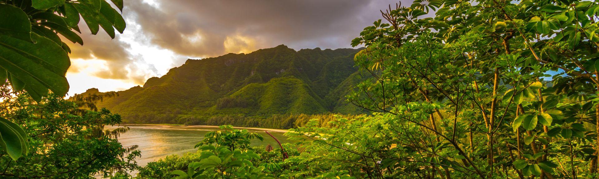 Kahana, Lāhainā, Hawaii, USA