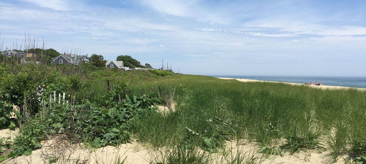 Siasconet Beach, Nantucket, MA, USA