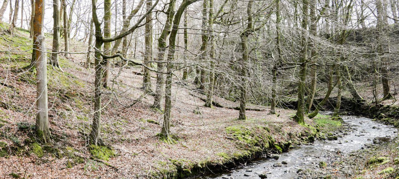 Fulwood, Preston, Lancashire, UK
