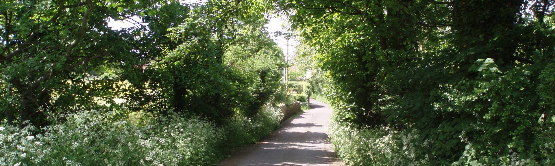 Keynsham, Bristol, Bath and North East Somerset, UK