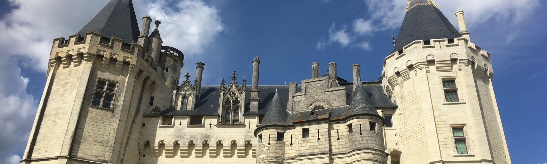 Savigny-en-Véron, Indre-et-Loire (département), France
