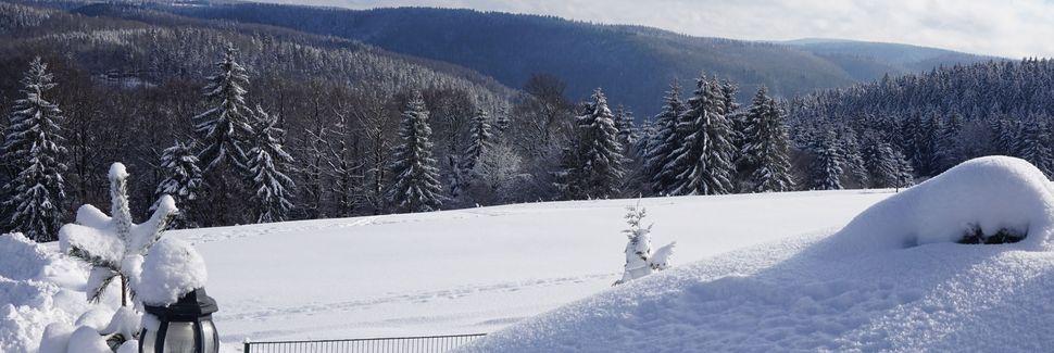Frauenwald, Thüringen, Deutschland