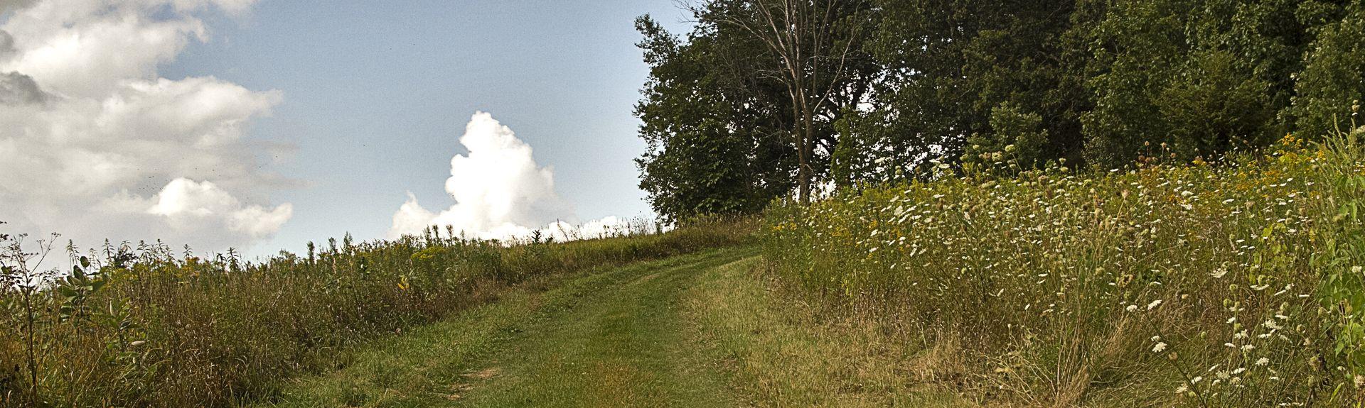 Pendarvis (site minier historique), Mineral Point, Wisconsin, États-Unis d'Amérique