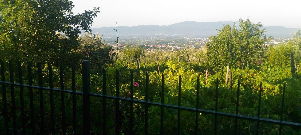 Puglianello, Benevento, Campania, Italy