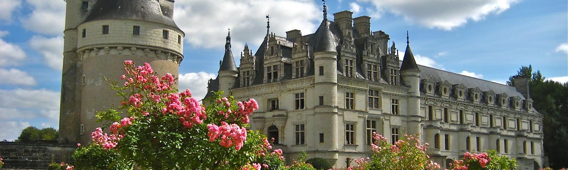 Saint-Mard-de-Réno, Orne (département), France