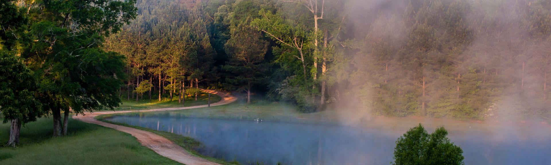 Greenville, Georgia, Estados Unidos