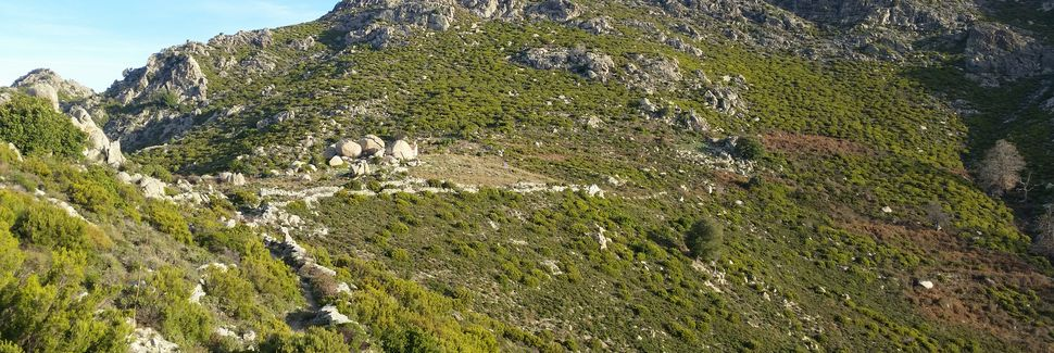 Bisinchi, Korsika, Frankrike