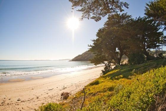 Cooks Beach, Waikato, Nouvelle-Zélande