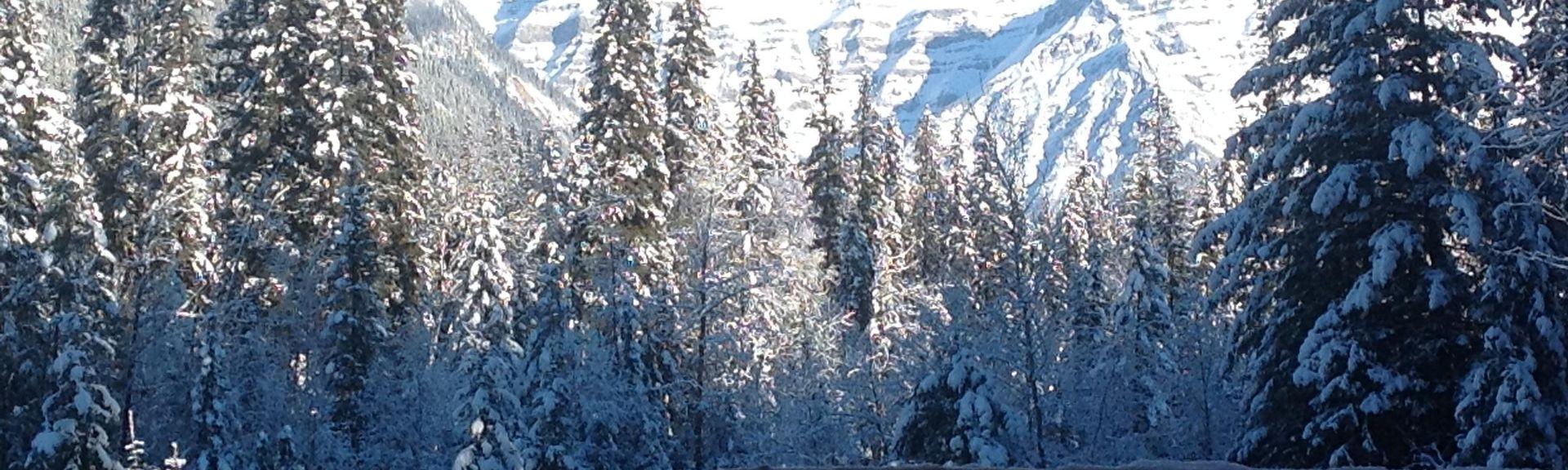 George Hicks Regional Park, Valemount, British Columbia, Canada