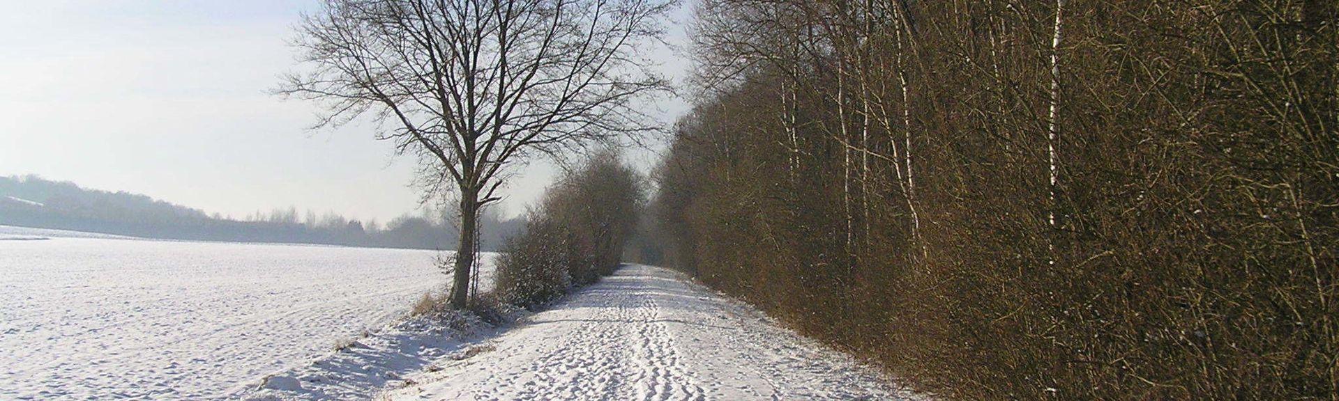 Ardennes, France
