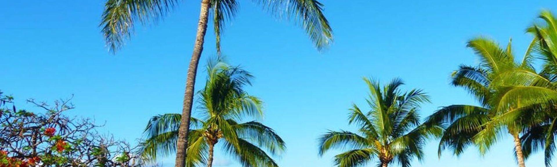 Lahaina Shores Beach Resort (Lahaina, Hawaï, Verenigde Staten)