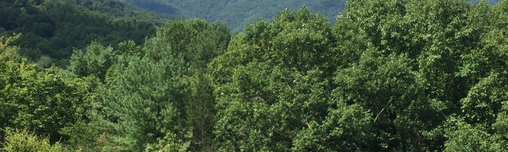 Crozet, Virginia, Verenigde Staten
