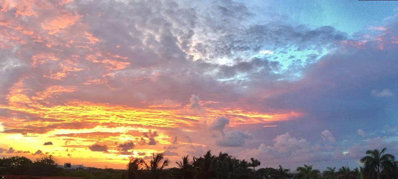 Northeast Coconut Grove, Miami, FL, USA