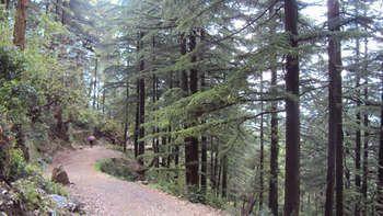Kangra District, Himachal Pradesh, Indien