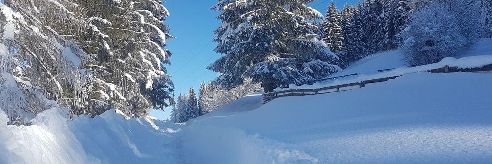 Kartitsch, Tirol, Austria