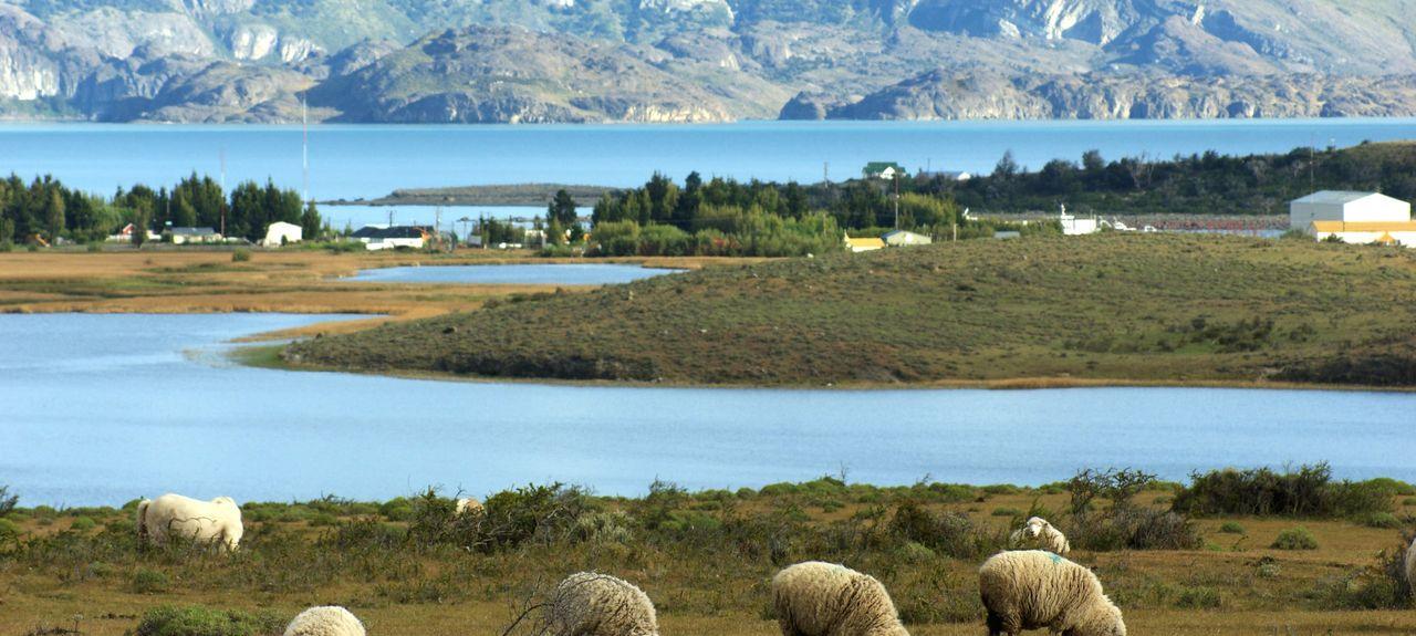 El Calafate, Provinz Santa Cruz, Argentinien