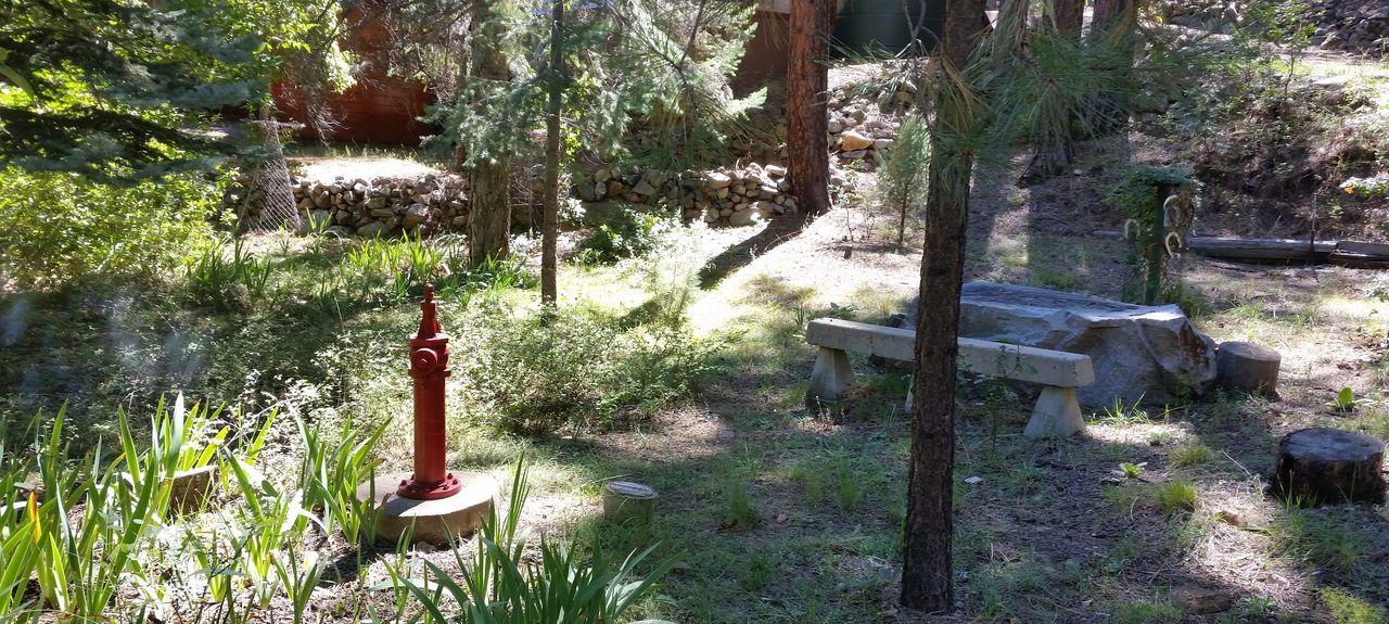 Dewey-Humboldt, AZ, USA