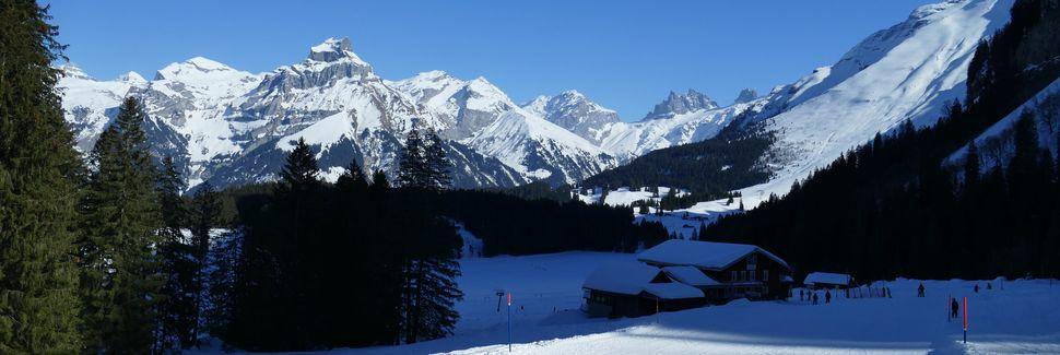 Haeaeggen - Glogghues Skilift, Kanton Bern, Schweiz