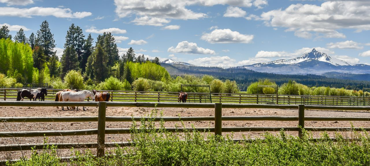 Black Butte Ranch, Sisters, Oregon, États-Unis d'Amérique