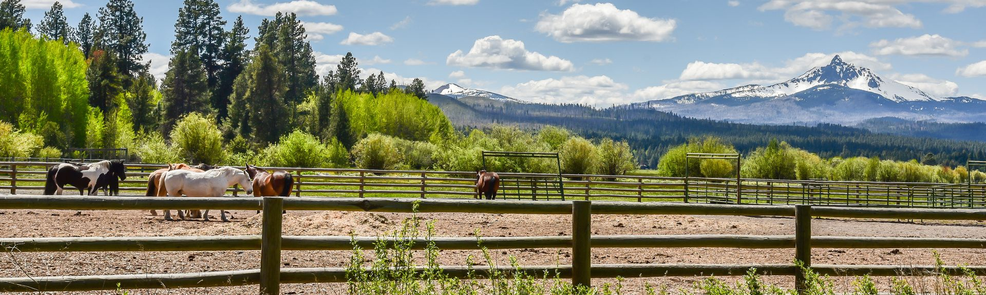 Black Butte Ranch, Sisters, Oregon, United States of America