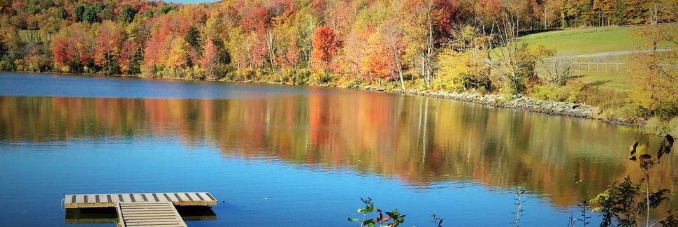 Scott Township, Comté de Wayne, Pennsylvanie, États-Unis d'Amérique