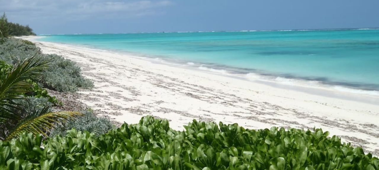 Parrot Cay, Caicos Islands, Isole Turks e Caicos