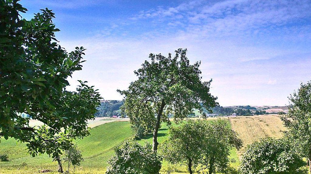 Woiwodschaft Schlesien, Polen