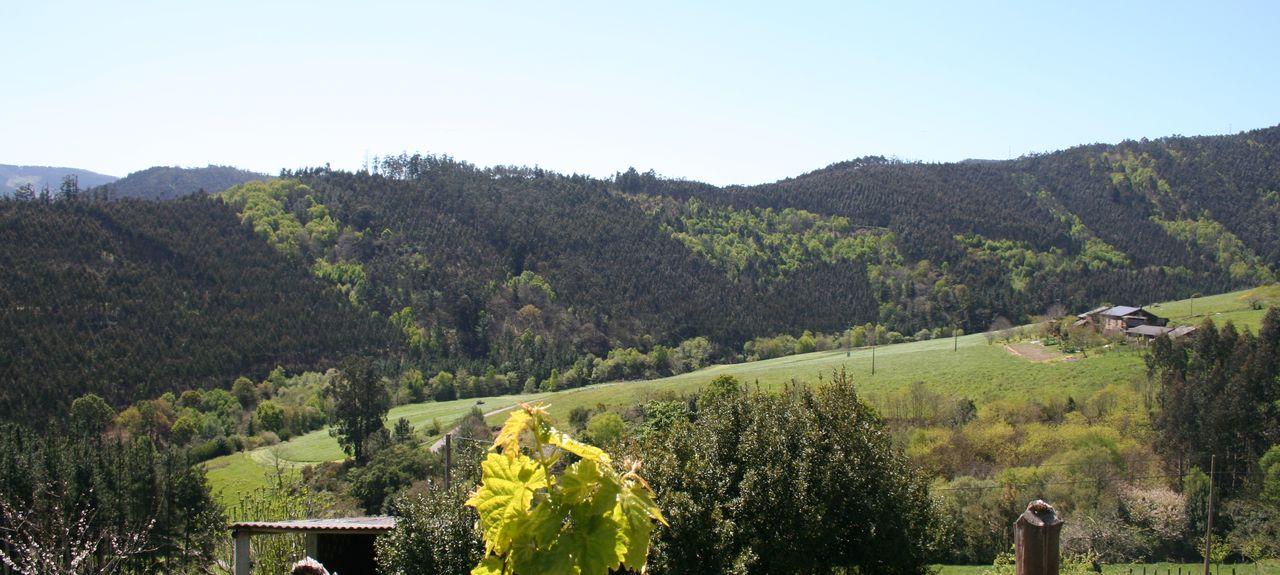 Lourenzá, Galicia, Spain