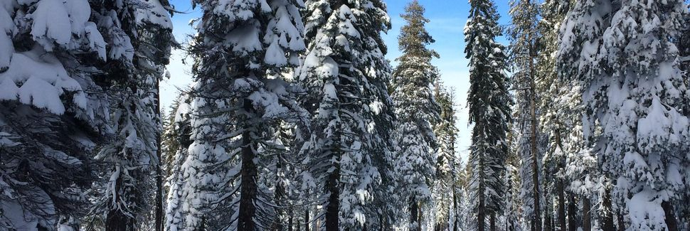 Soda Springs Mountain Resort, Soda Springs, Kalifornia, Yhdysvallat