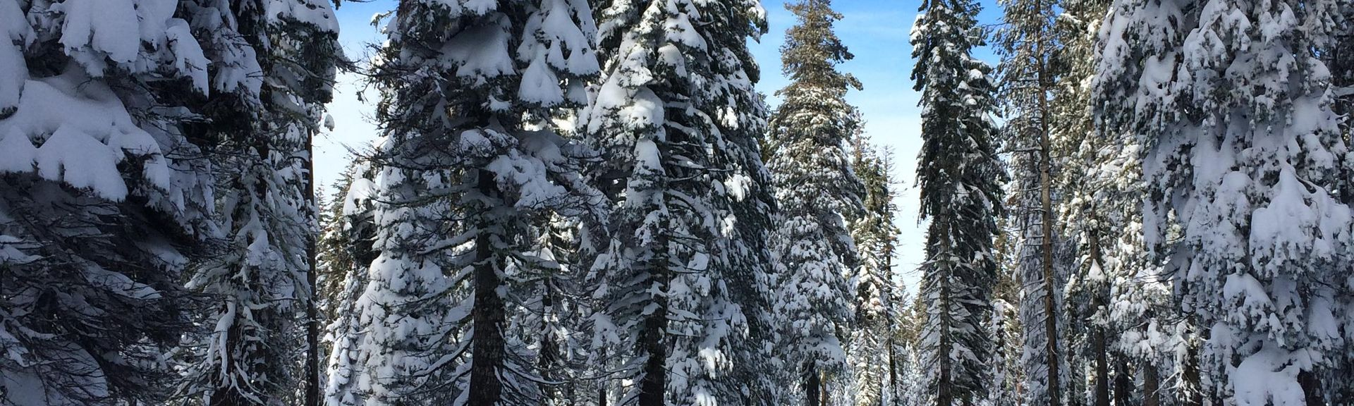 Soda Springs Mountain Resort, Soda Springs, CA, USA