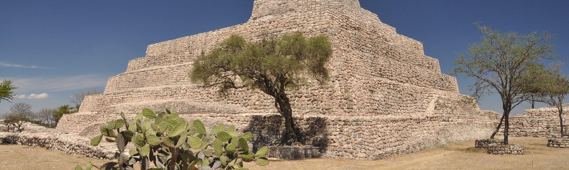 Colonia Caracol, San Miguel de Allende, Guanajuato, Mexico