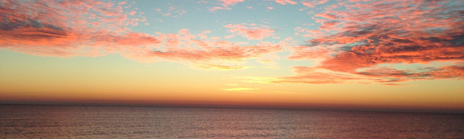 Driftwood Beach, Jekyll Island, Georgia, Verenigde Staten