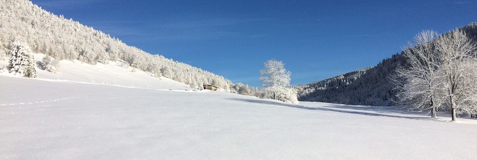 Parque natural regional del Haut-Jura, Bourgogne-Franche-Comte, Francia