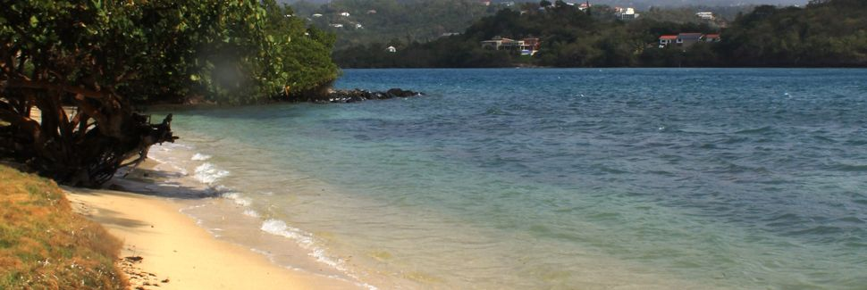 Universität St. George's, Saint George's, Grenada