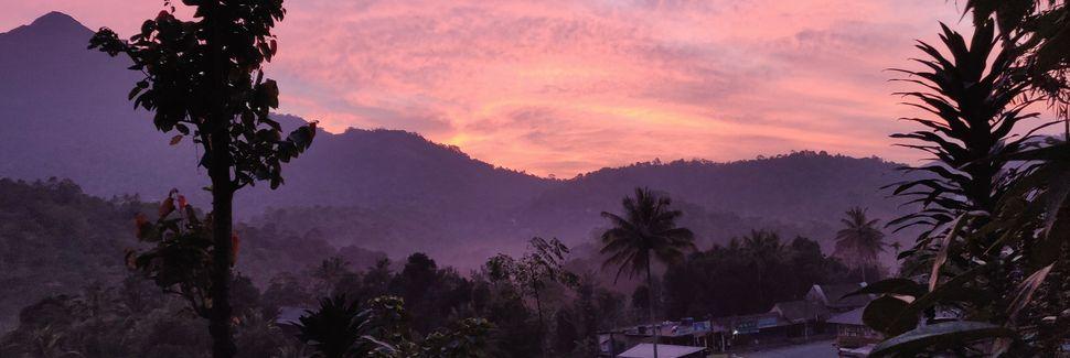 Munnar, Kerala, India