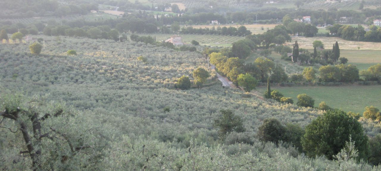 Giano dell'Umbria, Perugia, Umbria, Italy