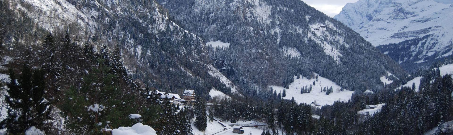 District de Gwatt, Canton of Bern, Suisse