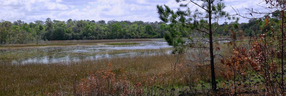 Brooksville, Florida, Yhdysvallat