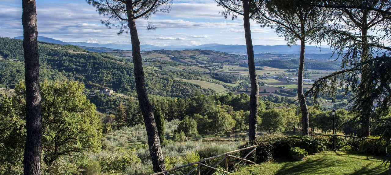 Ramazzano - Le Pulci, Perugia, Umbria, Italy