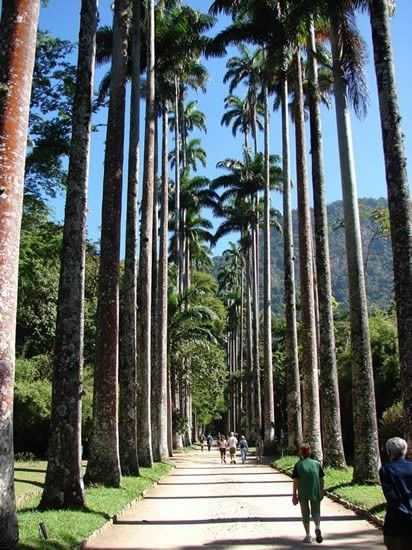 Parque Olímpico, Rio de Janeiro, Rio de Janeiro, Brasil